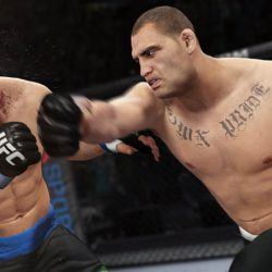 download ufc 3 pc skidrow